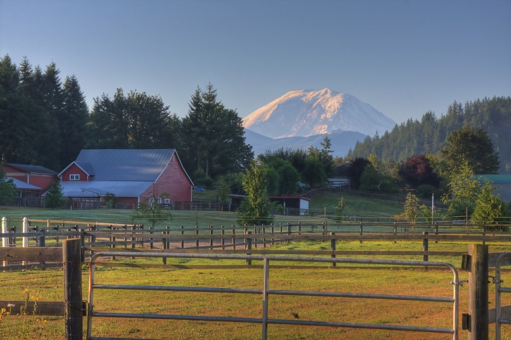 Landscape Contractor Enumclaw, Washington